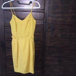 NWOT Lush XS dress